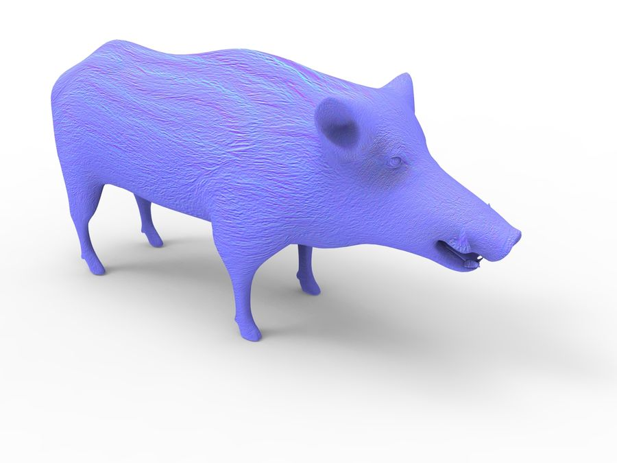 Cinghiale royalty-free 3d model - Preview no. 20