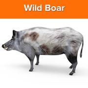 Wild Boar low poly 3d model