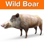 Wild Boar game ready 3d model