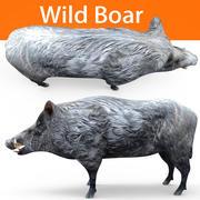 脏野猪 3d model