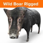 Wild Boar Black Rigged 3d model