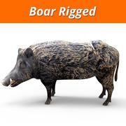 Boar Rigged 3d model