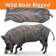 Wild Boar Rigged 3d model