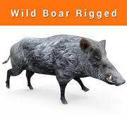 Wild Boar Rigged low poly 3d model