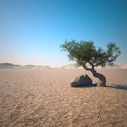 Пустынное озеро 3d model