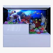 Akwarium morskie 3d model