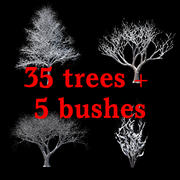 Winter Tree & Bush Collection 3d model
