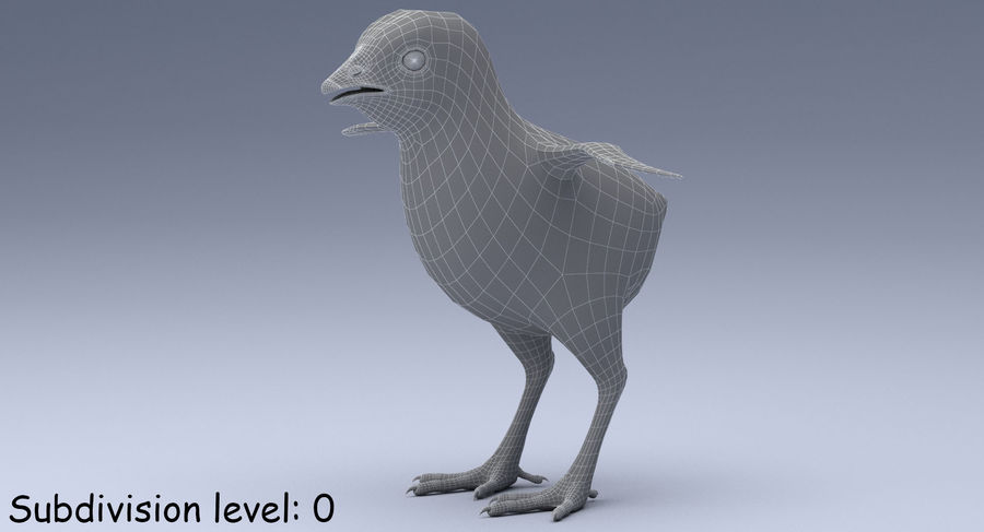 Chick royalty-free 3d model - Preview no. 15