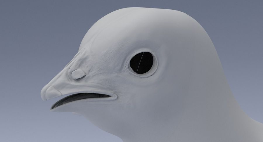 Chick royalty-free 3d model - Preview no. 12