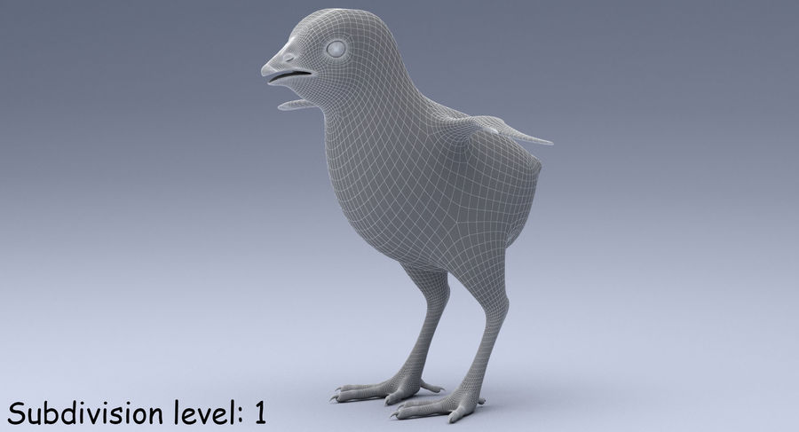 Chick royalty-free 3d model - Preview no. 16