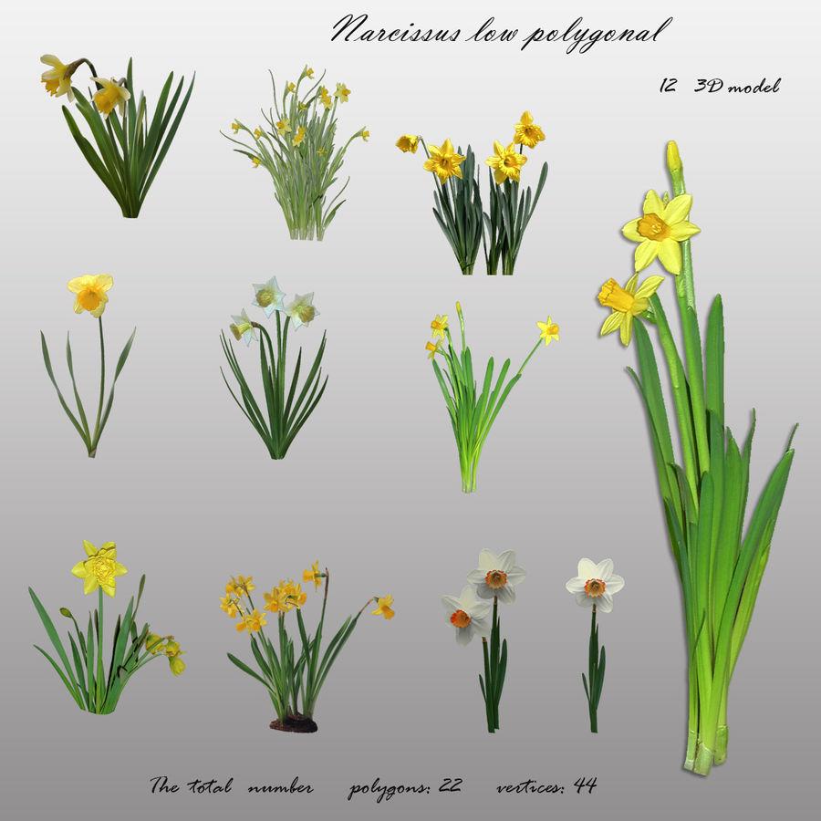 Fleur Narcisse 3D basse polygonale royalty-free 3d model - Preview no. 1
