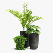 plants set 03 3d model