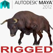 Bull opgetuigd voor Maya 3d model