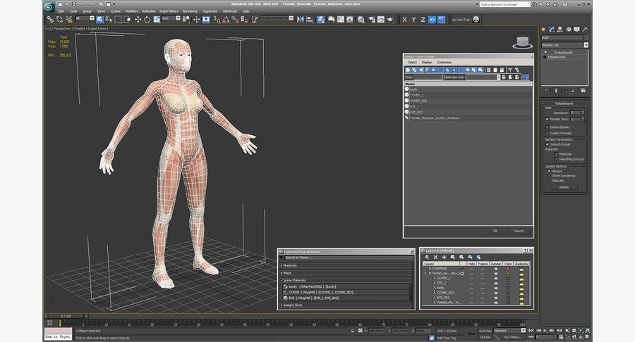 Anatomie du système musculaire féminin royalty-free 3d model - Preview no. 16