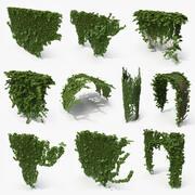 Ivy Architectural Bundle (2) 3d model
