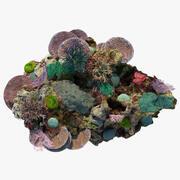 Coral Reef 3d model