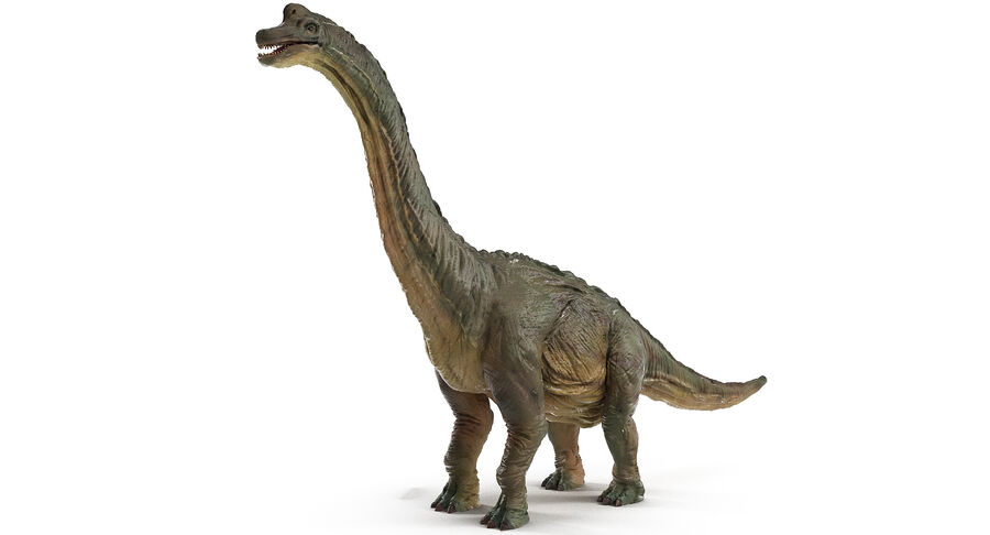 Braquiosaurio royalty-free modelo 3d - Preview no. 4