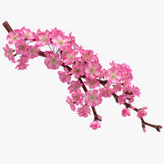 Realistic Sakura Branch 3d model