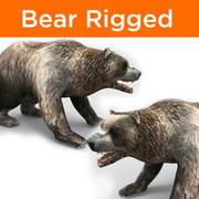 Urso de cabelo rigido 3d model