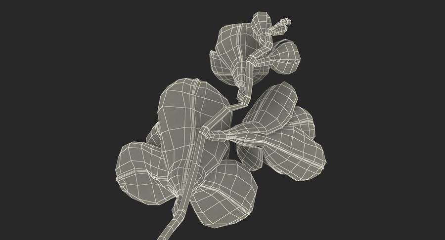 Red Freesia Flower royalty-free 3d model - Preview no. 19