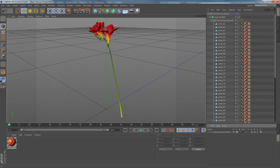 Red Freesia Flower royalty-free 3d model - Preview no. 12