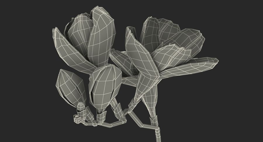 Red Freesia Flower royalty-free 3d model - Preview no. 17