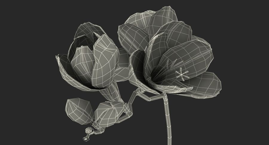 Red Freesia Flower royalty-free 3d model - Preview no. 18