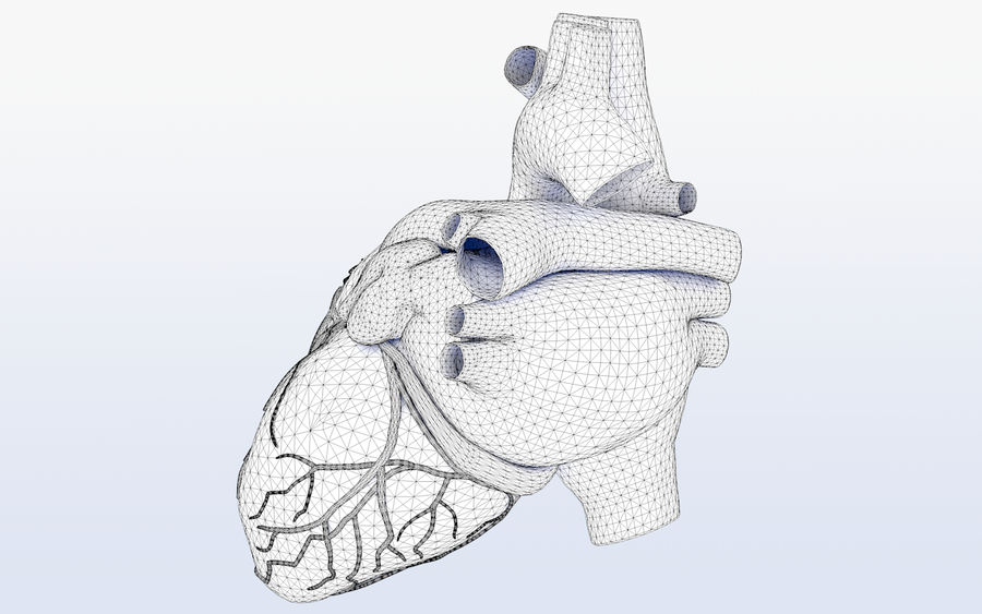 Human heart Anatomy royalty-free 3d model - Preview no. 9