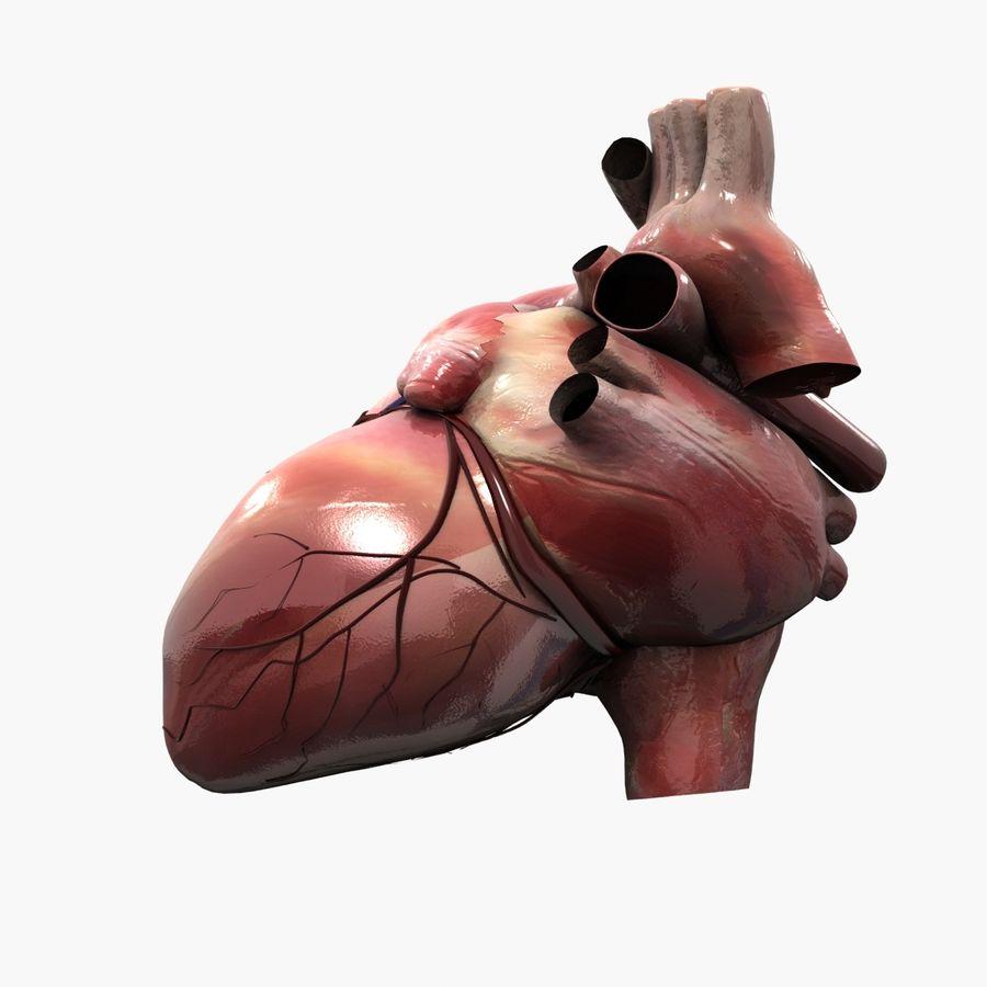 Animowane ludzkie serce royalty-free 3d model - Preview no. 5