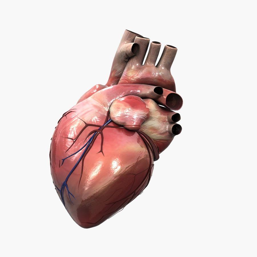 Animowane ludzkie serce royalty-free 3d model - Preview no. 3