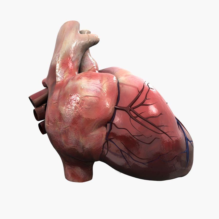 Animowane ludzkie serce royalty-free 3d model - Preview no. 2