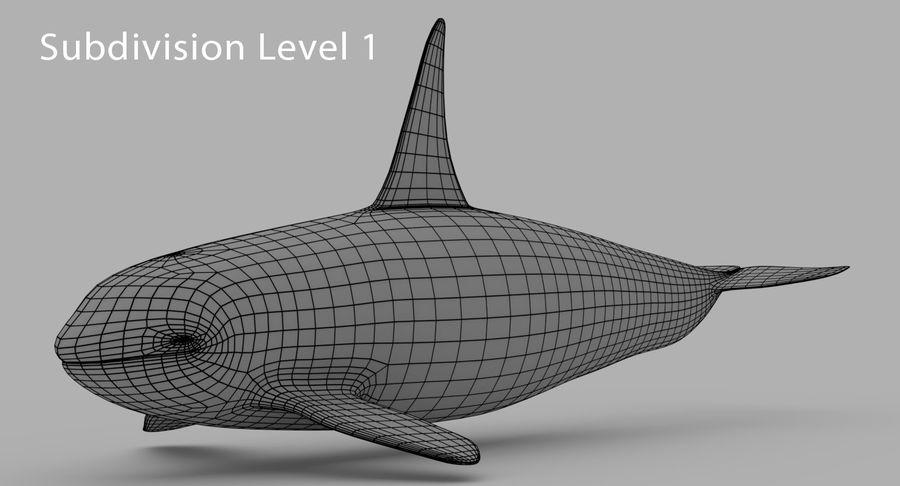 Katil balina royalty-free 3d model - Preview no. 9