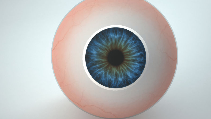 eyeball royalty-free 3d model - Preview no. 5
