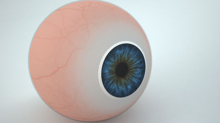 eyeball royalty-free 3d model - Preview no. 6