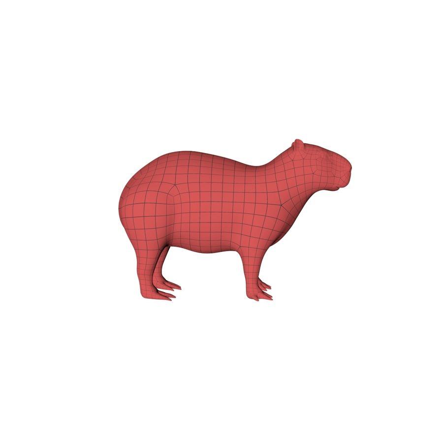 Capybara base mesh royalty-free 3d model - Preview no. 1
