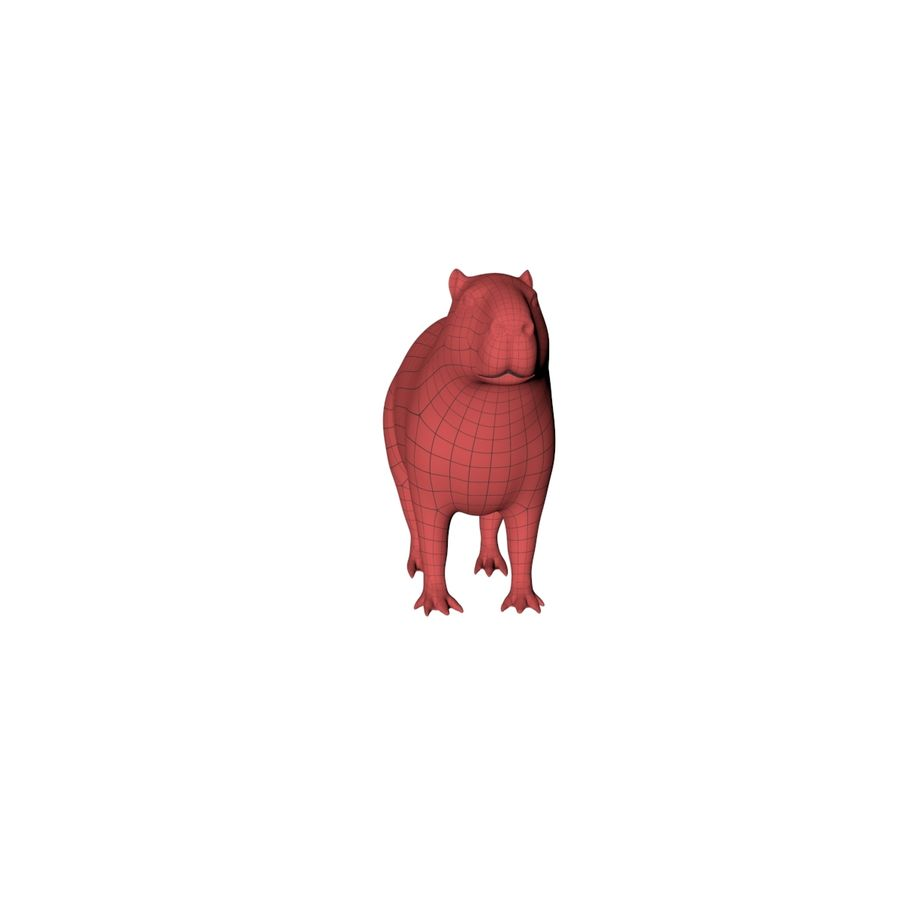 Capybara base mesh royalty-free 3d model - Preview no. 3