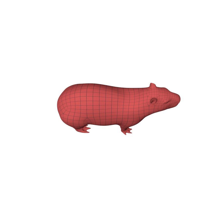 Capybara base mesh royalty-free 3d model - Preview no. 4