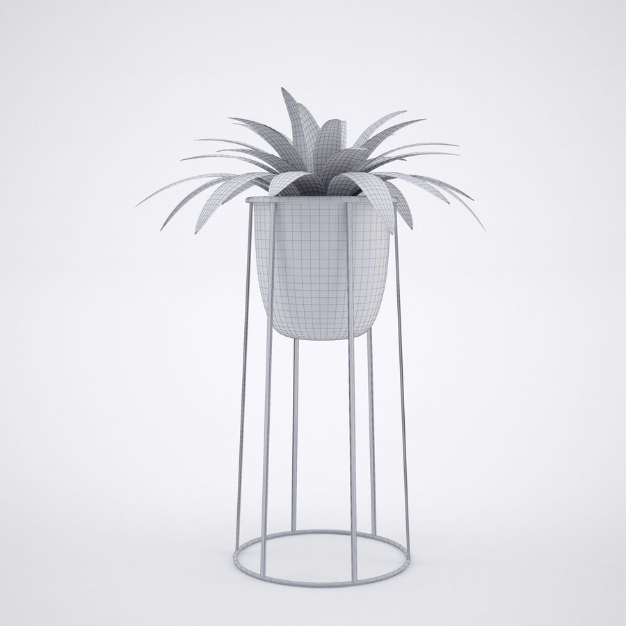 House plant 2 royalty-free 3d model - Preview no. 10