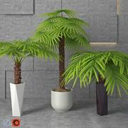 Houseplant 5 3d model