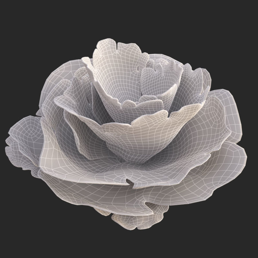 coral scroll royalty-free 3d model - Preview no. 24