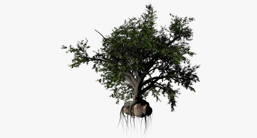 Albero a foglia larga royalty-free 3d model - Preview no. 2