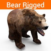 Bear Rigged 3d model