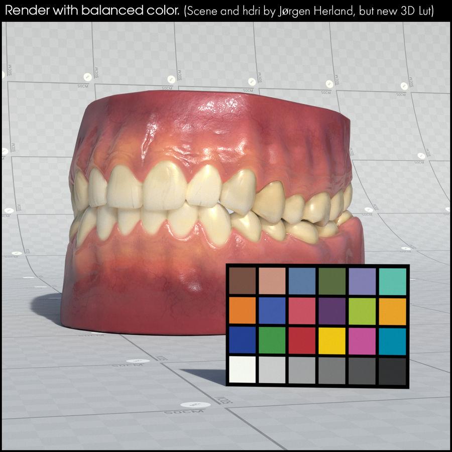 牙齿和牙龈 royalty-free 3d model - Preview no. 39