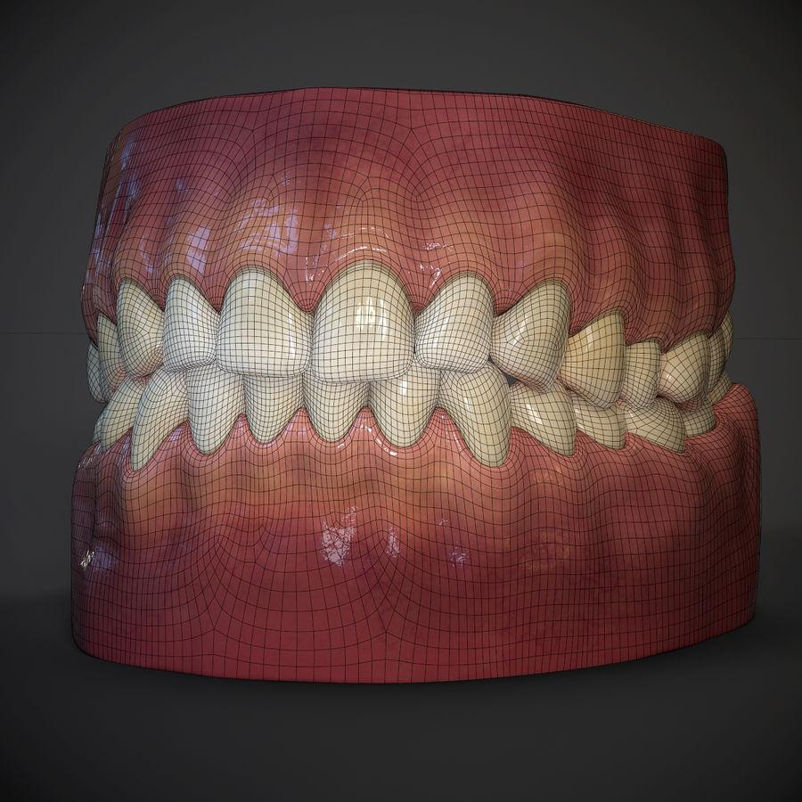 牙齿和牙龈 royalty-free 3d model - Preview no. 9