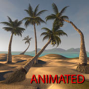 Palma kokosowa 3d model