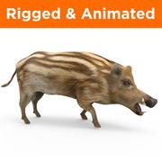 野猪索具和动画 3d model