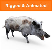 Boar Rigged & Animated 3d model