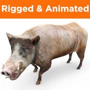 Boar Rigged And Animated game ready 3d model