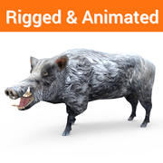 Wild Boar game ready Rigged And Animated 3d model
