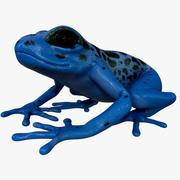 Blue Poison Dart Frog 3d model